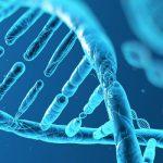 Stressreactie na jeugdtrauma meetbaar in DNA